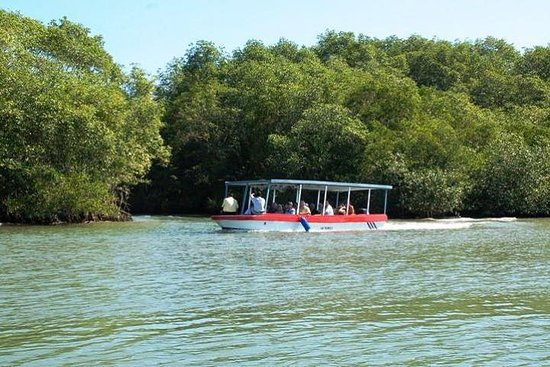 Damas Island by Boat Tour From Manuel...