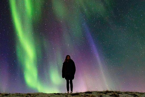 Giro di un giorno dell'Islanda della