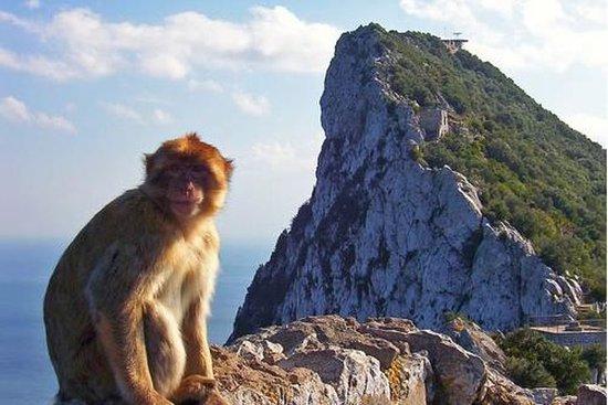 Gita di un giorno a Gibilterra