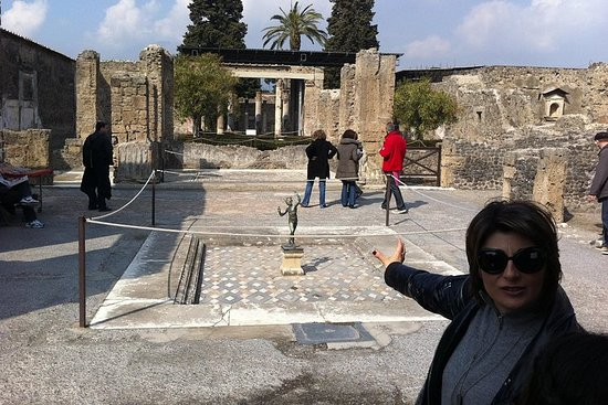 Gita di un giorno da Roma a Pompei e al