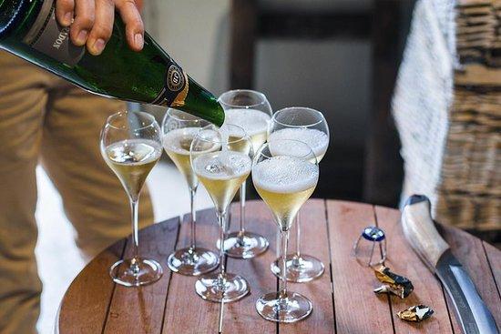 来自巴黎的豪华小团体香槟一日游,有酒庄品尝