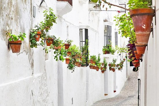 Private Day Trip from Jerez: The White Towns of Andalusia – fotografija