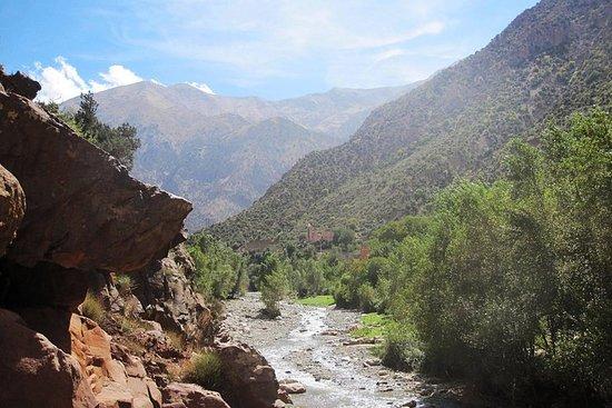 Ourika Valley: Dagstur fra Marrakech