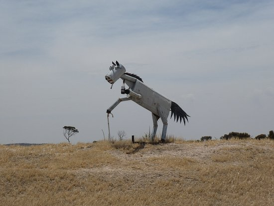 Кулин, Австралия: Tin Horse Highway