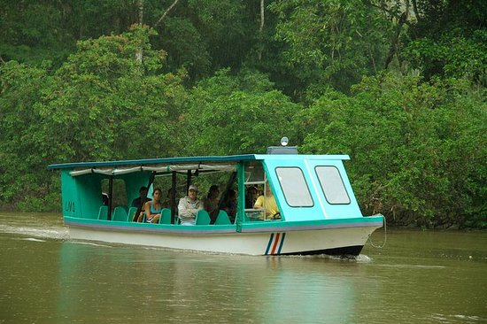 Excursion en bateau sur la rivière...