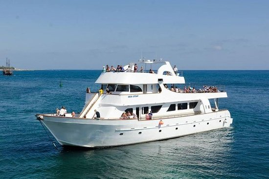 Sea Star Half-Day Cruise from Paphos