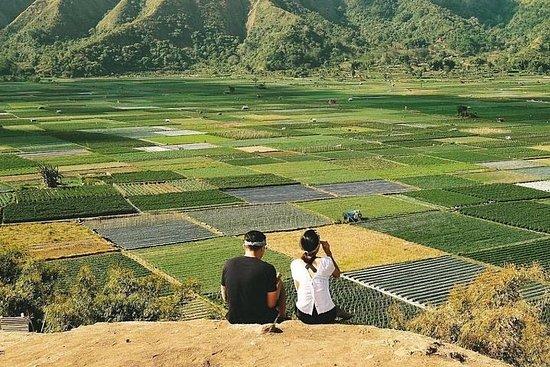 Sembalun-pakke .. (Speciel udsigt til terrasse med ris)
