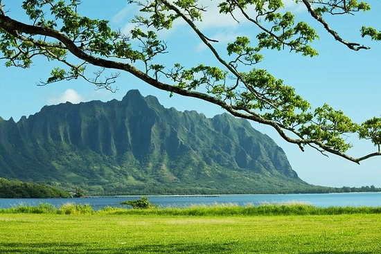 Green and Blue Oahu Private Tour