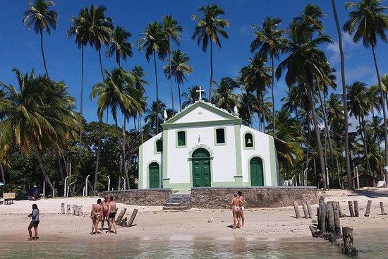 Tour a Praia dos Carneiros partindo...