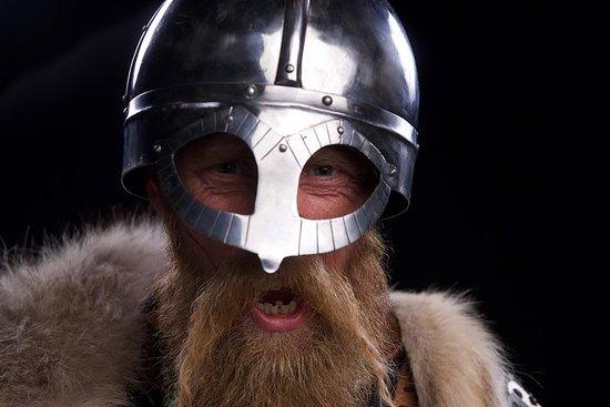 O Planeta Viking