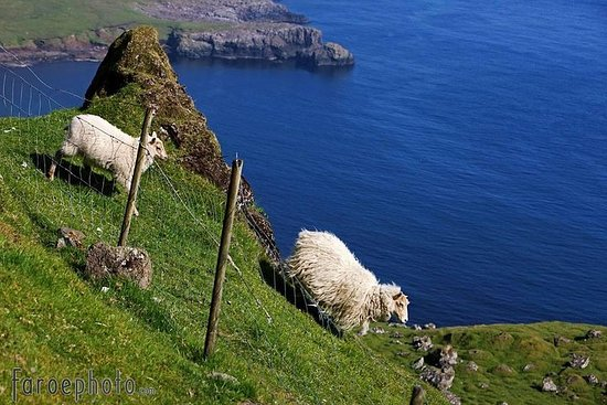 Suðuroy | The Hidden Gem