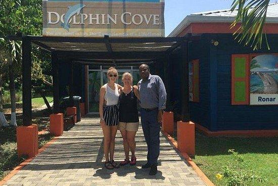 Dolphin Cove privat tur