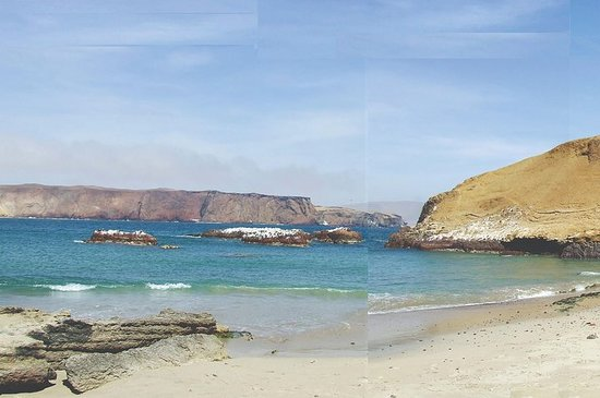 从利马出发:全天Paracas