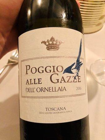 Great white tuscan