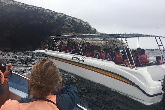 Tour 2 Días Islas Ballestas+Reserva...