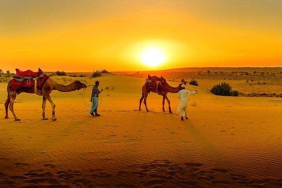 Desert Agafay & Atlasgebergte ...