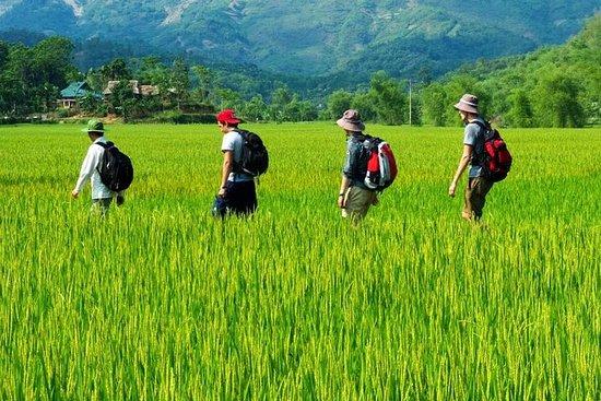 Foto Mai Chau - Pu Luong - Ninh Binh 4 days tour: Enjoy rural life & Eco tourism