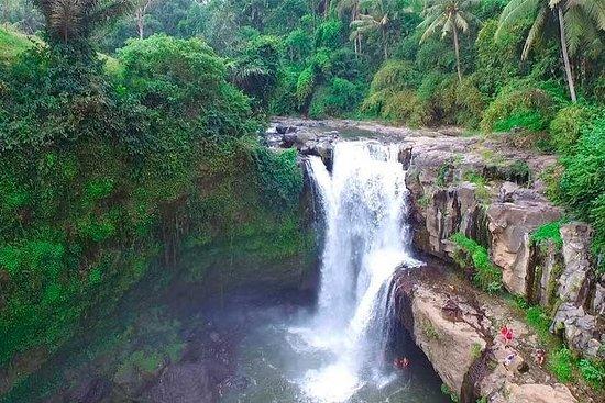 Tour pela Cachoeira Ubud