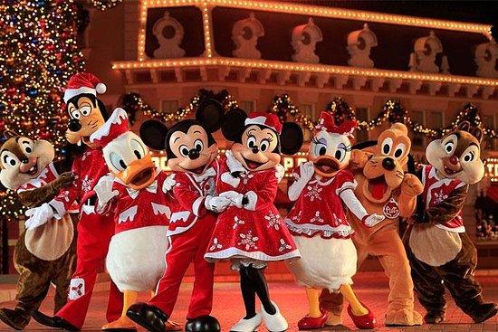 Hong Kong Disneyland Tour with...