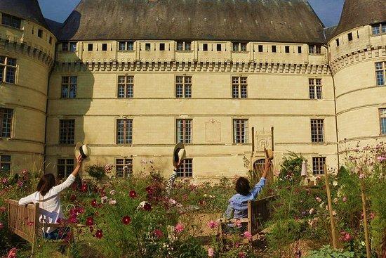 Villandry, l'Islette & Vouvray Small-Group Tour fra Amboise
