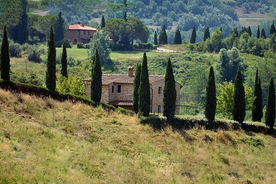 Chianti Classic Tour and Tasting from Bologna – fénykép