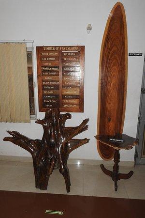 Various display items inside Samudrika Marine Museum