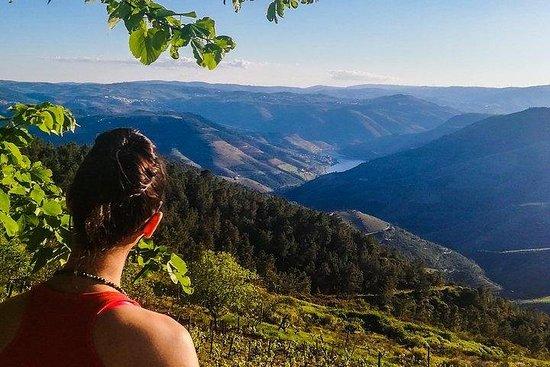 Off The Beaten Track Douro Valley Tour...