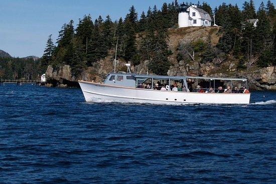 Crucero por la mañana en el Parque Nacional Acadia