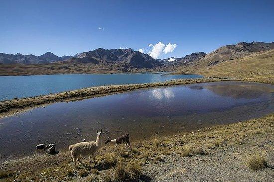 CONDORIRI Bergketen en lagunes Hele ...