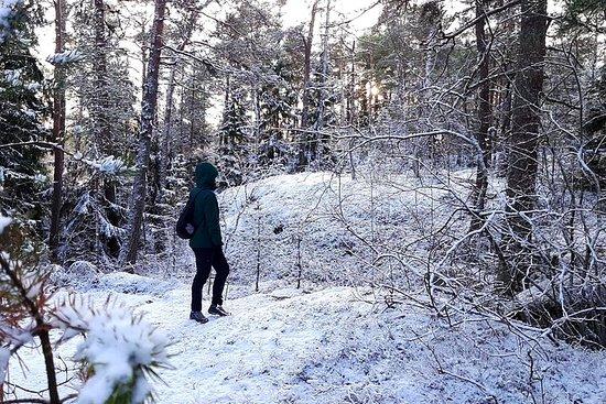 Winter archipel excursie
