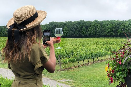Opplev 20 Valley Wine Tour i Beamsville