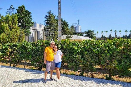 リスボン&サウスサイドワイン地区プライベートデラックスツアー