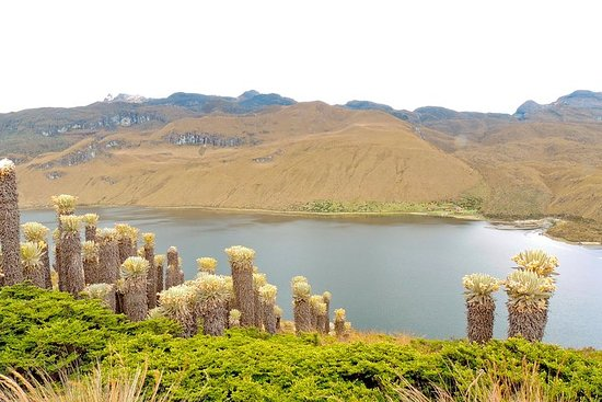 Pasadía Laguna del Otún