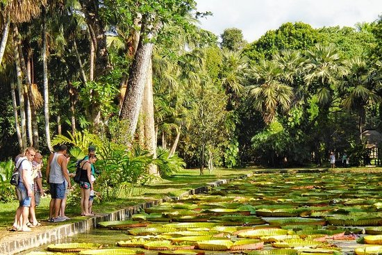 Mauritius på 3 dagar: Nord, Syd och ...