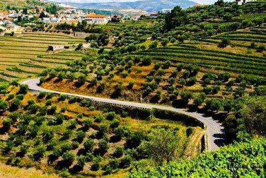 Douro Valley Private Driver - Douro...
