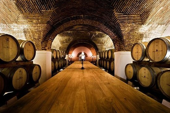 Cartuxa wijnproeverij (Eugénio de ...