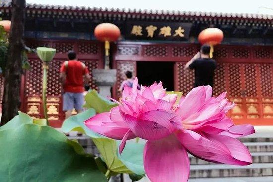 ランチと茶道を備えた北京の個人精神的なツアー