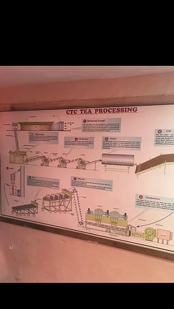 Process chart as displayed on the wall