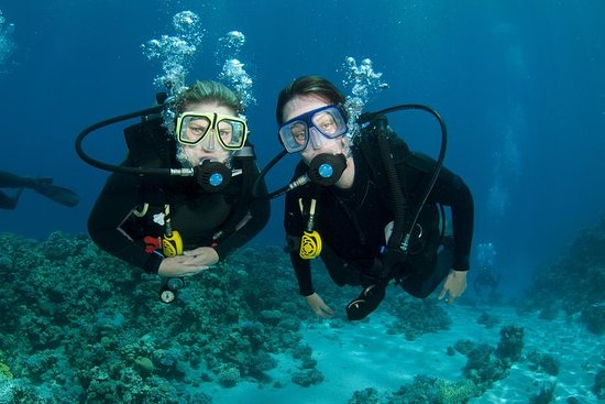 Discovery discovery Scuba diving 20 minutes at sea