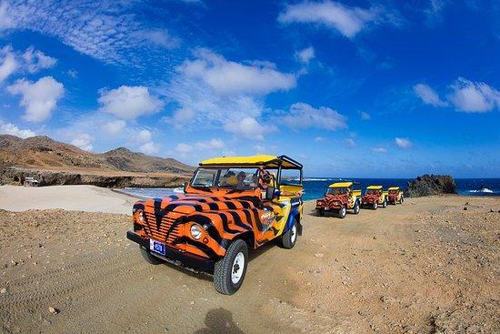 Visita a la isla de Aruba en vehículo...