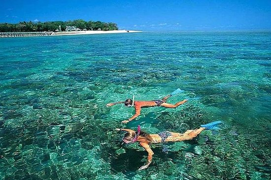 Cham Islands Full Day Tour from Hoi...