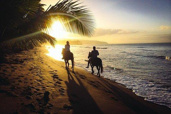 Sunset Horseback Riding Tour from Punta Cana