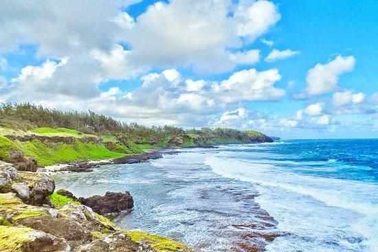南毛里求斯私人一日游:茶厂,自然公园和野生南海岸