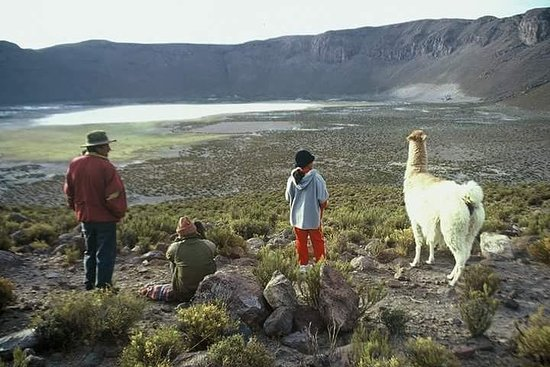 6 Days Private Best of Bolivia Tour ...