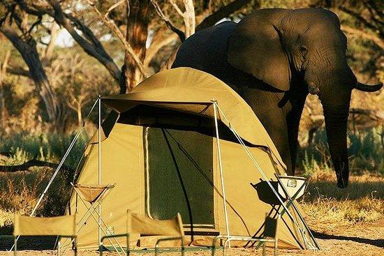 Chobe Camping 1 Tag & 1 Nacht