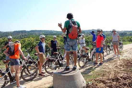 Barcelona: Wine e-Bike Tour in Penedès - Half Day