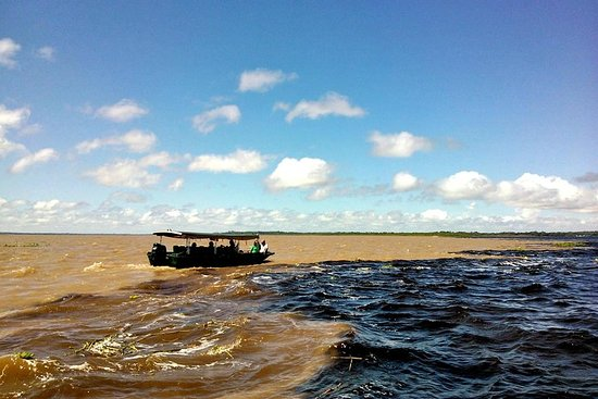 De Amazone-attracties - Volledige dag ...