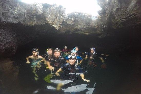 圣克鲁斯/加拉帕戈斯群岛/低预算4天游