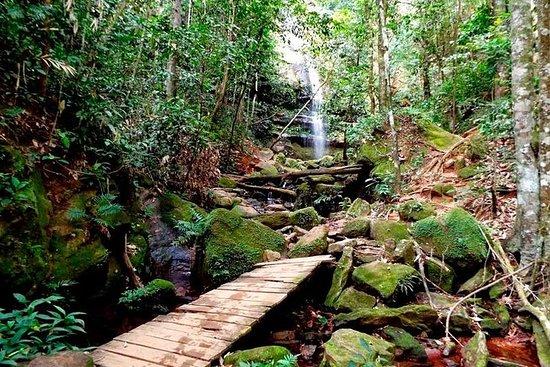 Cachoeira do Formiga, Fervedouros e...