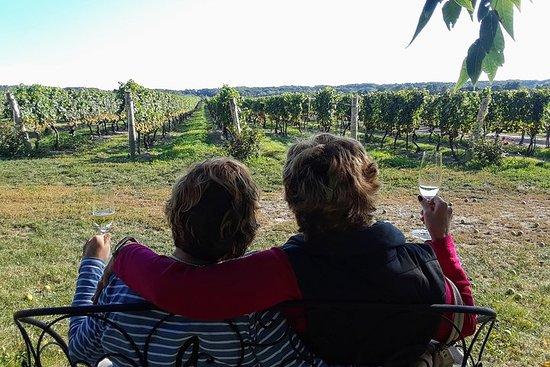 Ni-dagstur med vin fra hele dagen med Sommelier Guide fra...